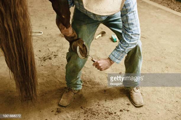 utah hufschmied sorgen für pferd mit huf wählen sie hufeisen westen der usa zu reinigen - hufeisen stock-fotos und bilder