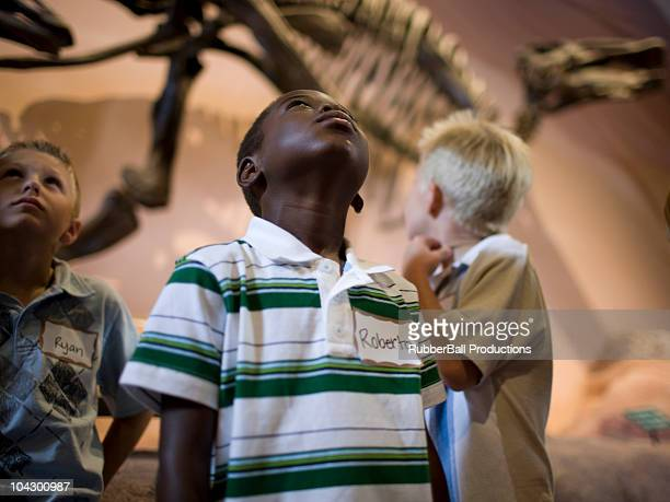 usa, utah, lehi, boys (6-9) in museum of dinosaurs - animal bones stock photos and pictures