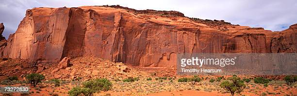 """usa, utah, monument valley, near mexican hat, red rock formation with mesquite"" - timothy hearsum stock-fotos und bilder"