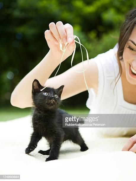USA, Utah, Orem, Woman playing with kitten