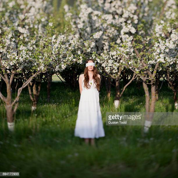 USA, Utah, Provo, Blindfolded young woman standing between trees in blossom