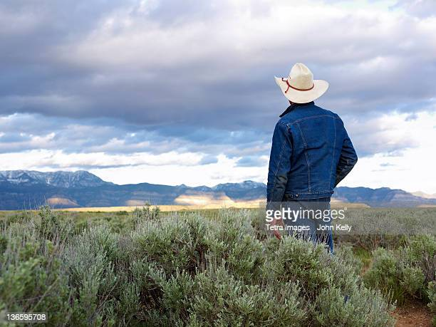 usa, utah, rear view of man standing in desert landscape - cowboy hat stock pictures, royalty-free photos & images