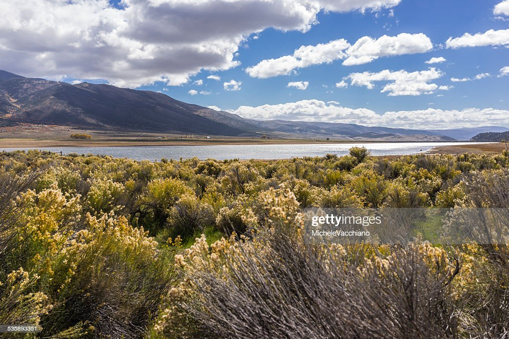 Utah. Sagebrush along the State Highway 24 near Koosharem Reservoir : Stock Photo