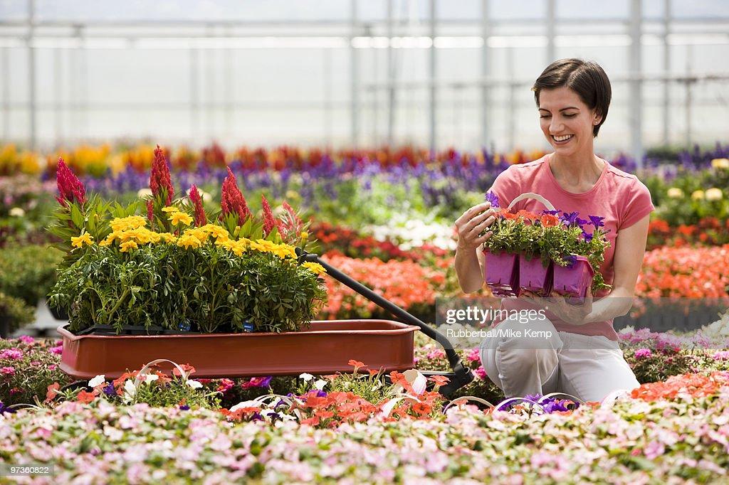 Plant Nursery Utah Thenurseries