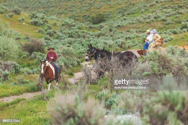 Utah Settler Wagon Western Outdoors Roundup Riding Horses Herding Livestock