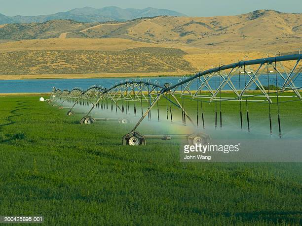 usa, utah, sprinklers watering farm grass - irrigation equipment stock pictures, royalty-free photos & images