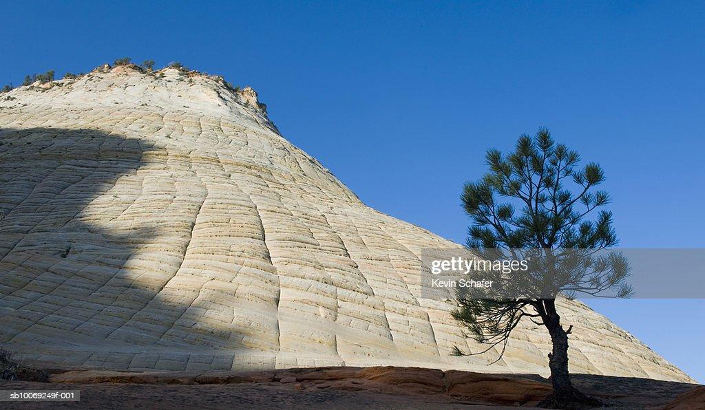 USA, Utah, Zion National Park, Checkerboard Mesa : Stockfoto