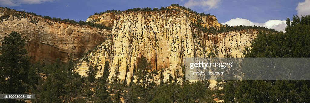 USA, Utah, Zion National Park, Mountain and trees : Stock Photo