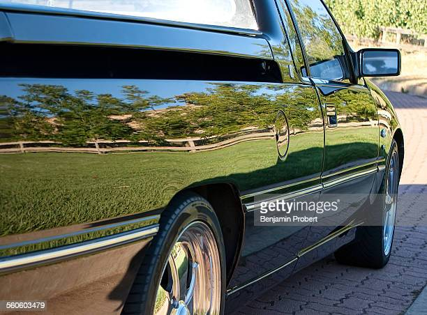 Utility vehicle reflecting grass and fence