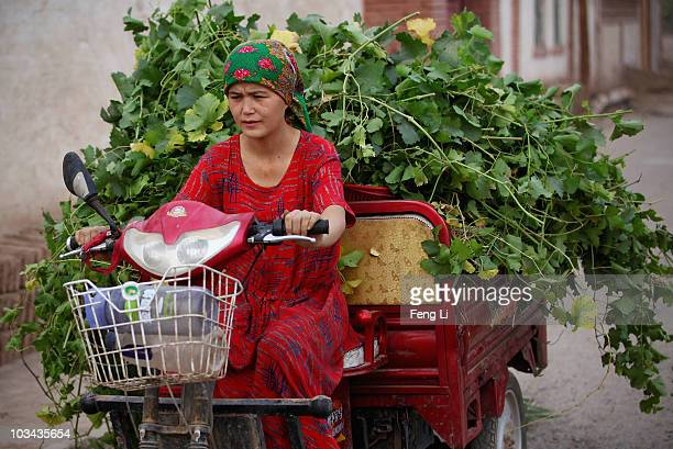 Uygur woman drives a threewheeled automobile on August 18 2010 in Turpan of Xinjiang Autonomous Region China Turpan basin is the second lowest...