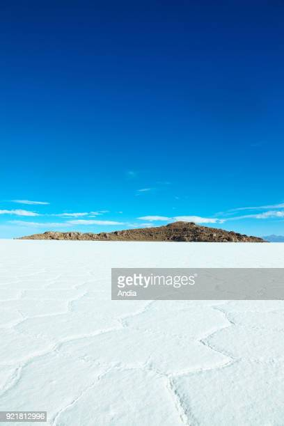salt flat Salar de Uyuni and former island Isla Incahuasi