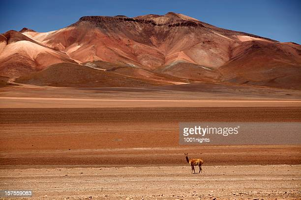 Uyuni en Bolivie