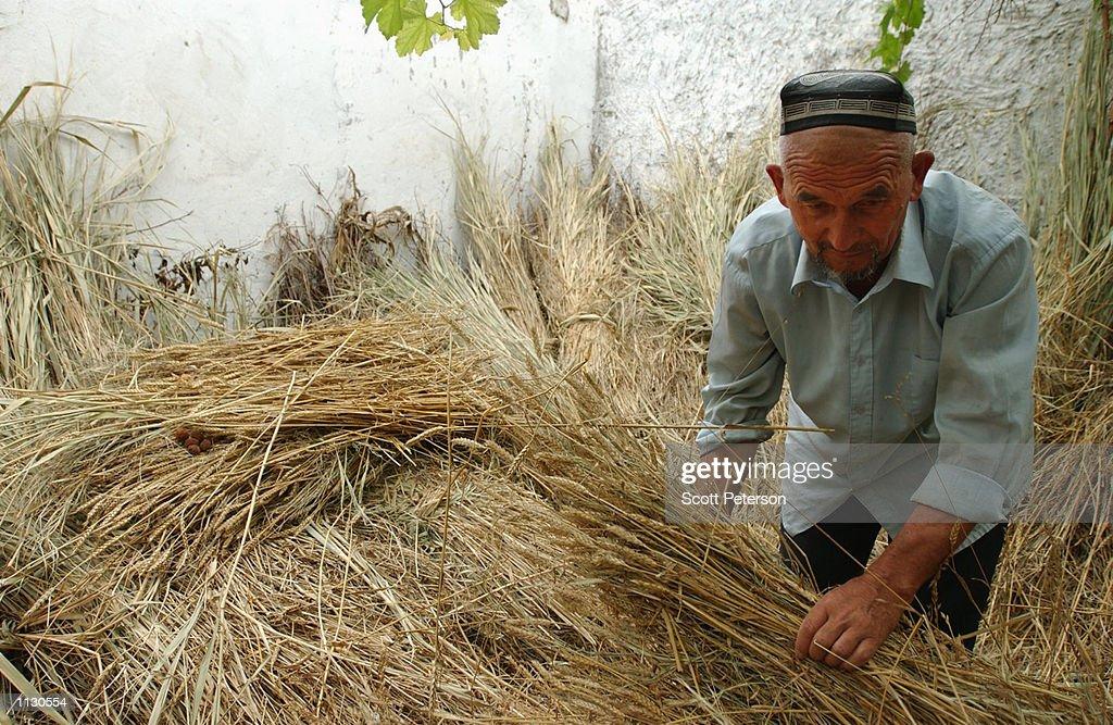 Life Improves For Uzbeks : News Photo