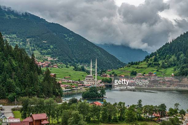 uzungol, trabzon - trabzon stock photos and pictures