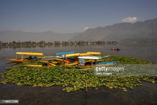 Vacant tourist Shikara boats are moored in middle of Dal lake during curfew like restrictions on September 09, 2019 in Srinagar, the summer capital...