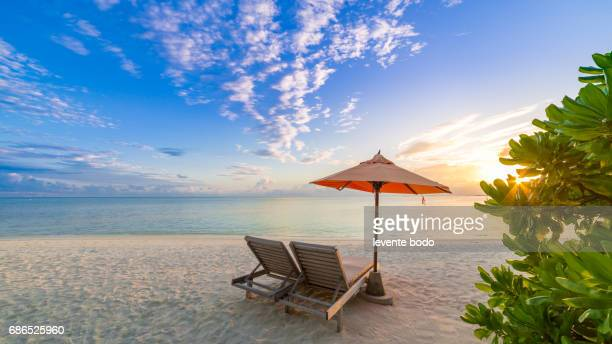 Vacation holidays background wallpaper - two beach lounge chairs under tent on beach with palm trees