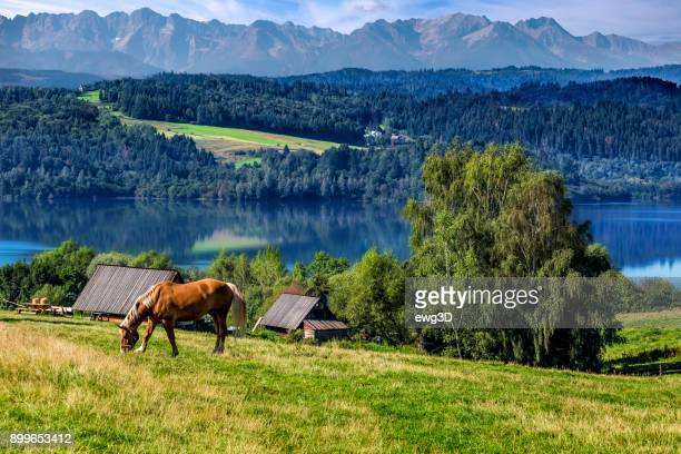 Vacation in Poland - Czorsztyn lake and Tatra Mountains landscape