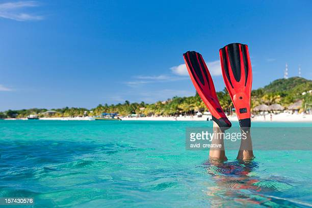 vacation lifestyles-snorkeler diving in ocean - honduras stock pictures, royalty-free photos & images