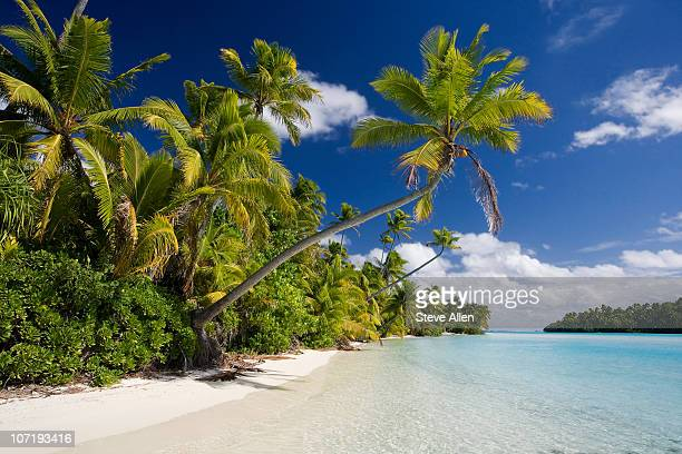 Vacation Paradise - Cook Islands