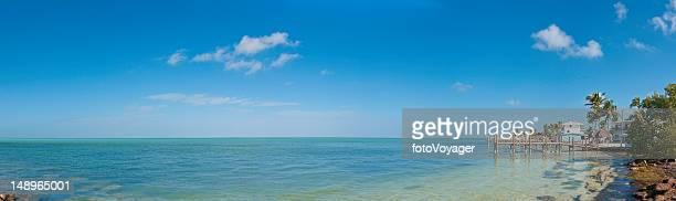 Vacation paradise palm ocean shore