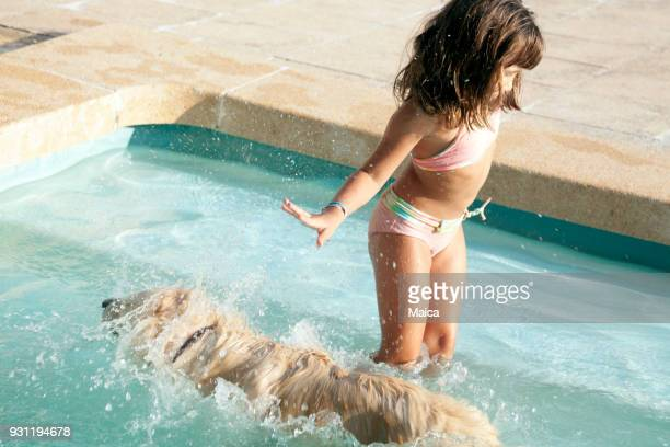 a vacation with my golden retriever friend - hairy girl stock pictures, royalty-free photos & images