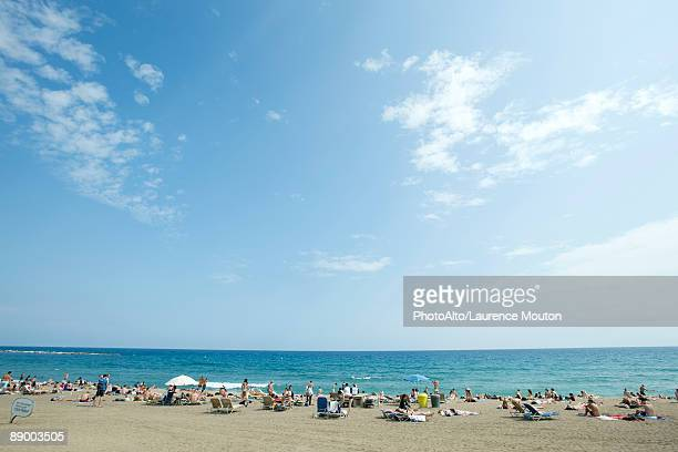 vacationers on beach - crowded beach stock pictures, royalty-free photos & images