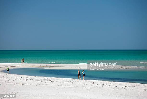 Vacationers on the beach at the shoreline of Anna Maria Island Florida United States of America