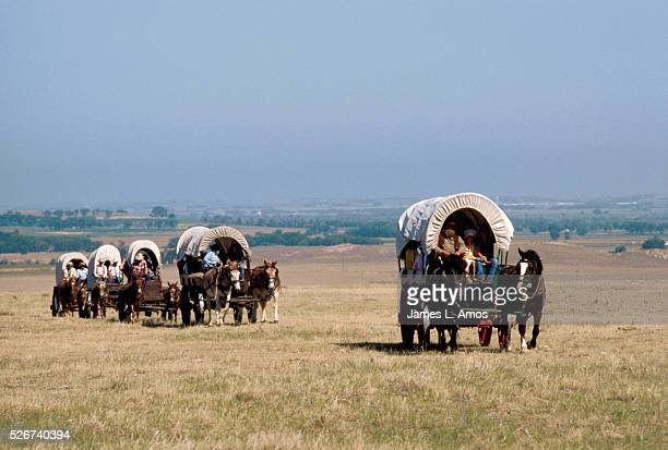 Vacationers ride in covered wagons across the Nebraska prairie along the route of the Oregon Trail as part of a vacation to simulate the Oregon Trail...