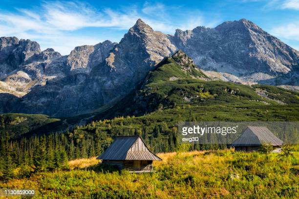 vacations in poland - gasienicowa valley, tatra mountains, poland - zakopane stock pictures, royalty-free photos & images