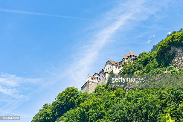 vaduz castle in liechtenstein - syolacan stock pictures, royalty-free photos & images
