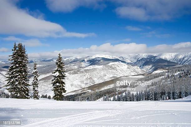 vail from wildwood - beaver creek colorado stock pictures, royalty-free photos & images