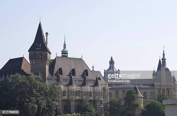 vajdahunyad castle - emreturanphoto stock-fotos und bilder