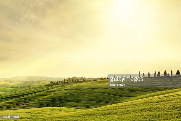 Val d'Orcia hillside sunset in Tuscany, Italy
