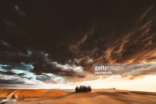 val d'orcia landscape - italian cypress stock photos and pictures
