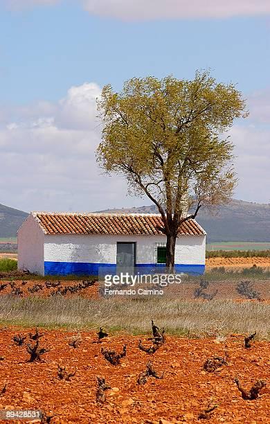 ValdepenasToledo Country house next to the wineyard