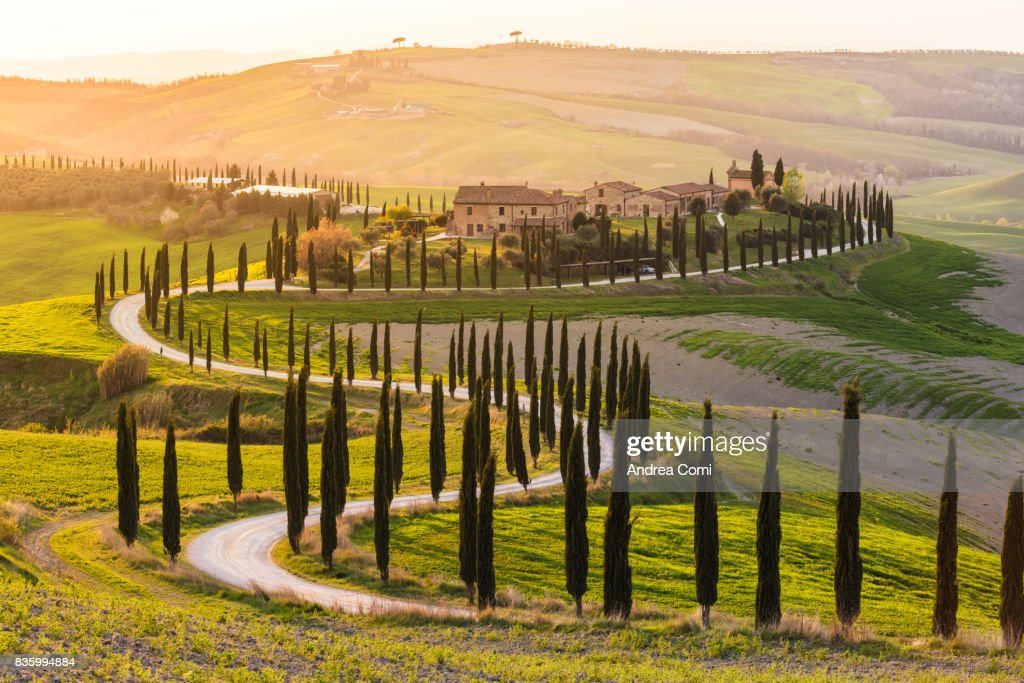 Valdorcia, Siena, Tuscany. Road of cypresses in a farmhouse at sunset : Stock Photo