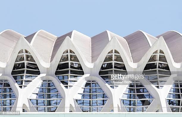 Valencia CAC /Príncipe Felipe Science Museum