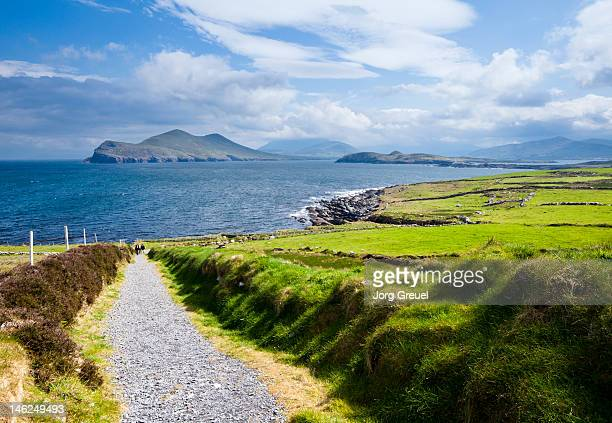 valentia island - ring of kerry stock photos and pictures
