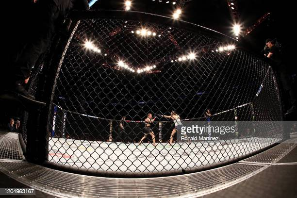 Valentina Shevchenko and Katlyn Chookagian in their Women's Flyweight Championship bout during UFC 247 at Toyota Center on February 08, 2020 in...