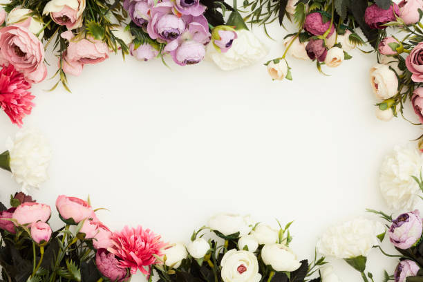 Free Flower Frame On White Background Images Pictures And