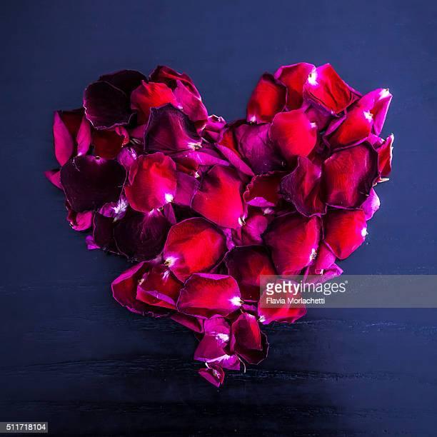 Valentine's Day - Brief