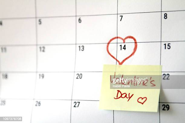 valentine's day - february stock pictures, royalty-free photos & images