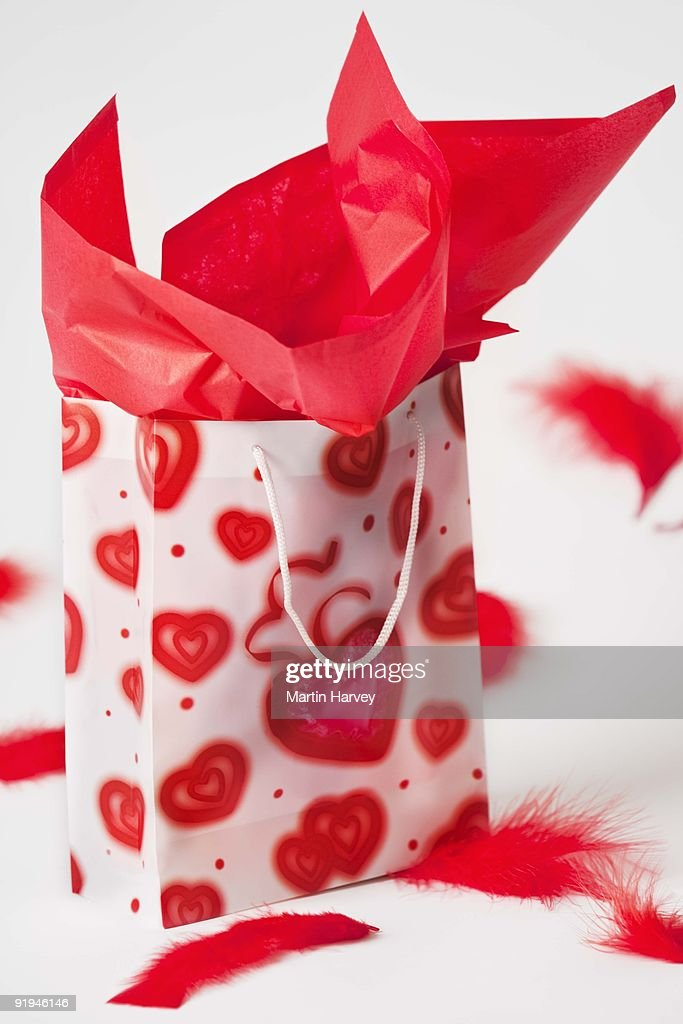 Valentines Day Theme Gift Bag With Red Feather Decoration Studio