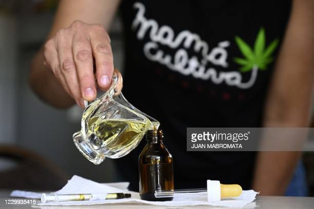 Valeria Rivera, member of the self-managing NGO Mama cultiva , prepares medicinal cannabic oil with self-cultivated cannabis for an epileptic boy, at...