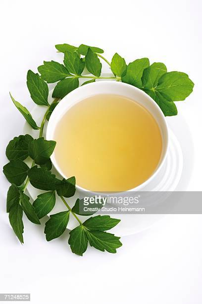 Valerian tea, elevated view, close-up