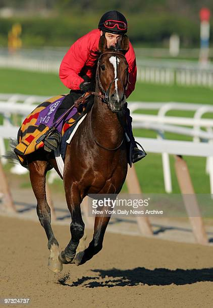 Valixir runs the track at Belmont Park in preparation for the 2005 NetJets Breeders' Cup Mile one of eight races in the 22nd Breeders' Cup World...