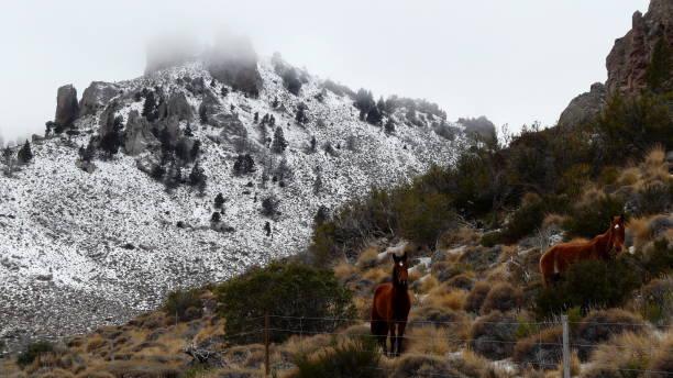 Valle de la Fragua