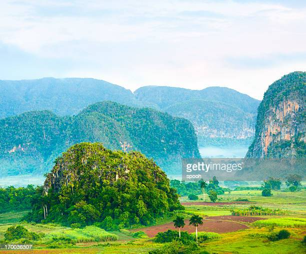 valle de viñales, cuba - cuba fotografías e imágenes de stock