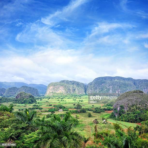 valle de vinales, kuba - valle de vinales stock-fotos und bilder