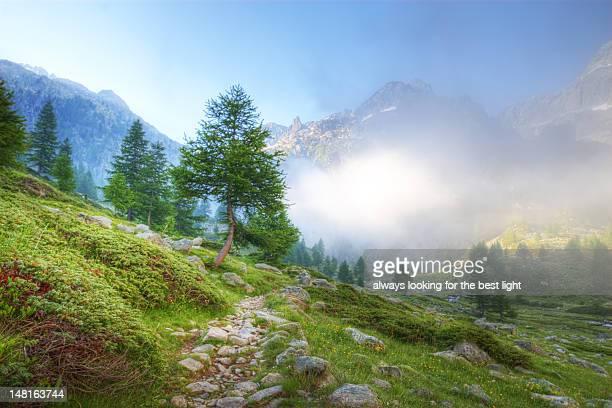 Valle Gesso landscape